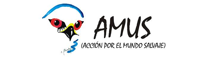 AMUS-colaboraciones