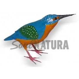 MARTÍN PESCADOR (Alcedo atthis) Pájaro de PITA