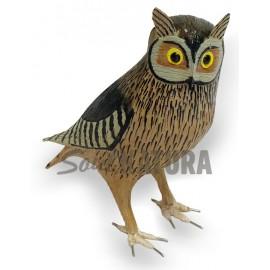 AUTILLO (Otus scops) Pájaro de PITA