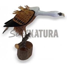 BUITRE LEONADO (Gyps fulvus) Pájaro de PITA