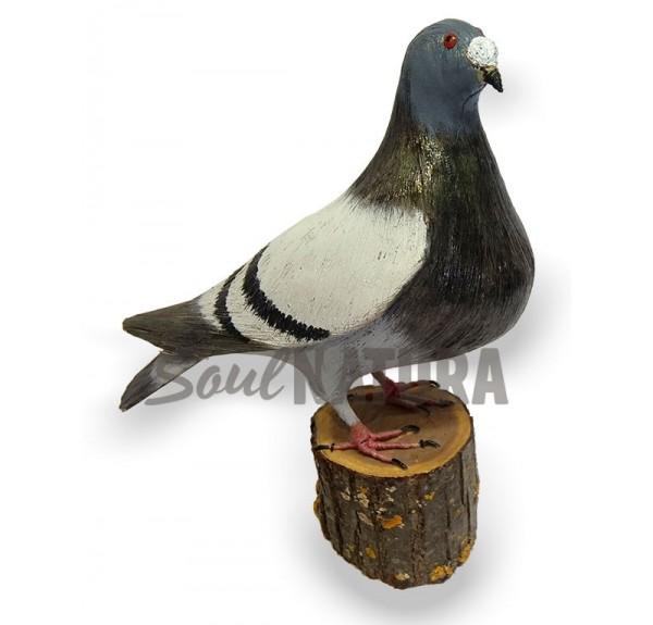 PALOMA BUCHONA Pájaro de PITA