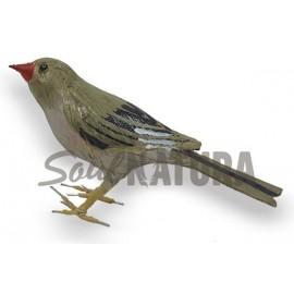 CAMACHUELO TROMPETERO (Bucanetes githagineus) Pájaro de PITA
