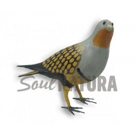 GANGA ORTEGA-Pájaro de PITA