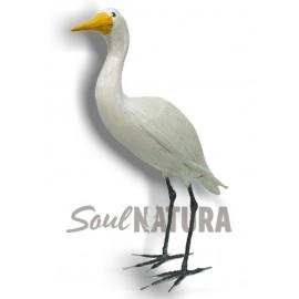 GARCILLA BUEYERA (Bubulcus ibis) Pájaro de PITA